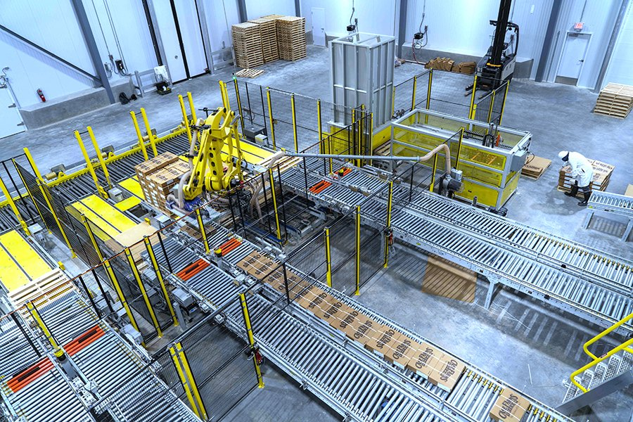 Overhead view of Hytrol conveyor and Fanuc robot palletizing cases of freshly frozen chicken